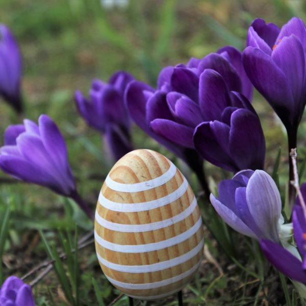 What's On this Easter in Cambridge